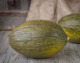 Frutas Melão